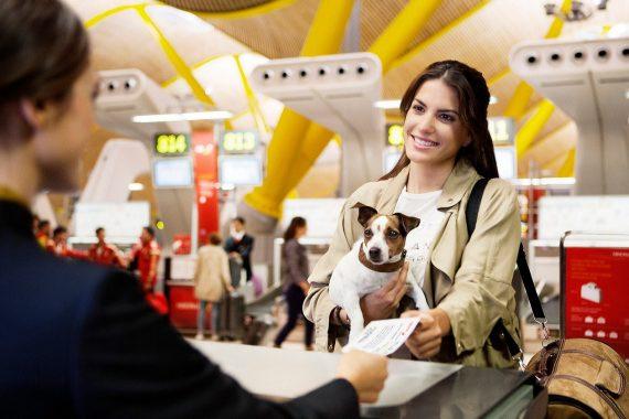 Foto de una chica facturando con su perro en un mostrador de Iberia antes de viajar
