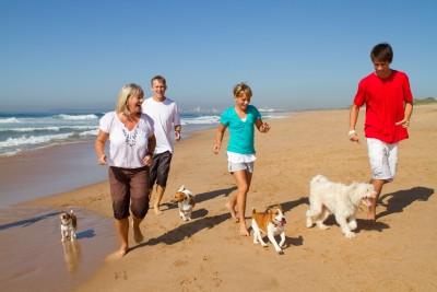 playas para perros en España 2015