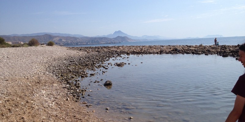 Playa para perros en Campello