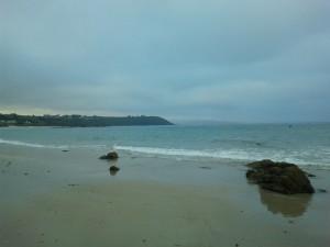 playas para perros en galicia