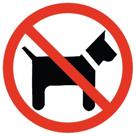 Resultado de imagen de no perros