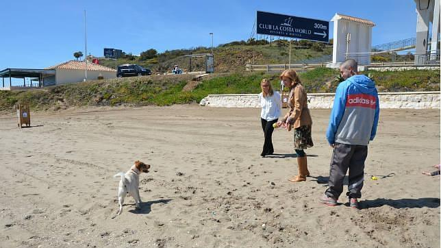 playa-del-castillo-para-perros-fuengirola