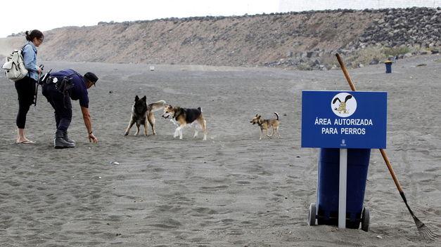 Playas para perros en Gran Canaria