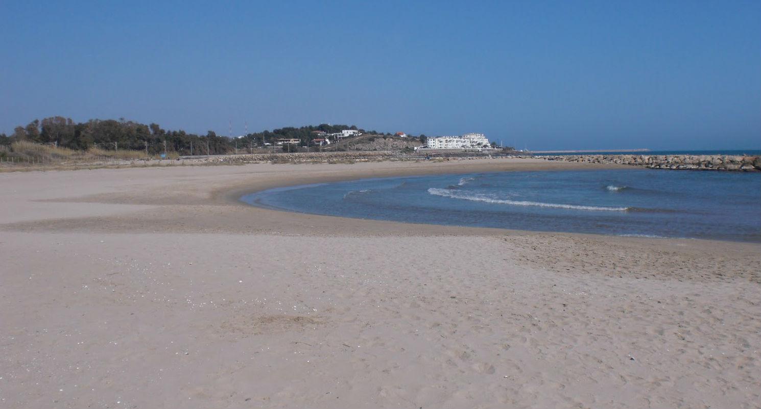 playa para perros de Vilanova i la Geltrú, en la provincia de Barcelona