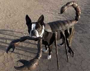 Disfraz para perros de escorpión