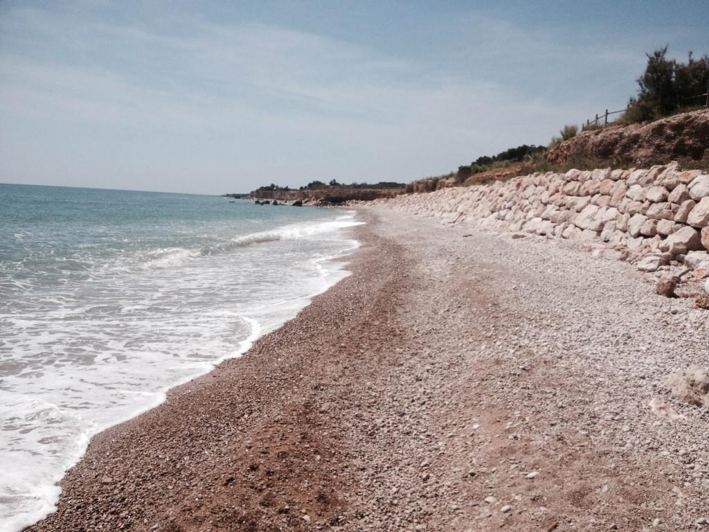 Playa que admite perros en Alcanar