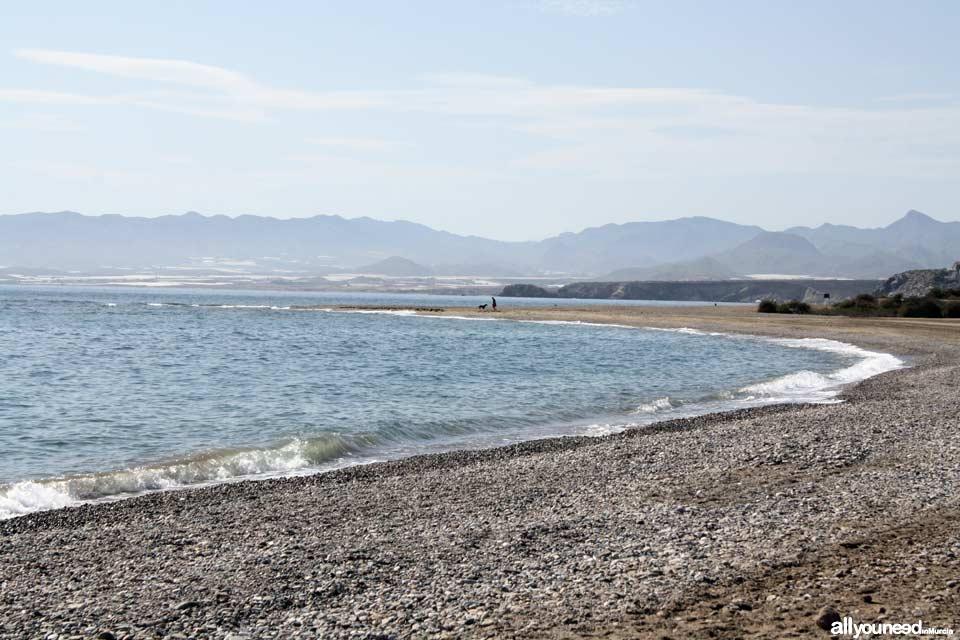 Playa Sierra de las Moreras para Perros.