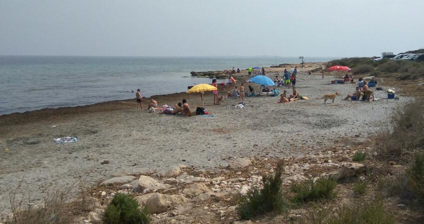 Playa para perros en santa pola - Cabo santa pola ...
