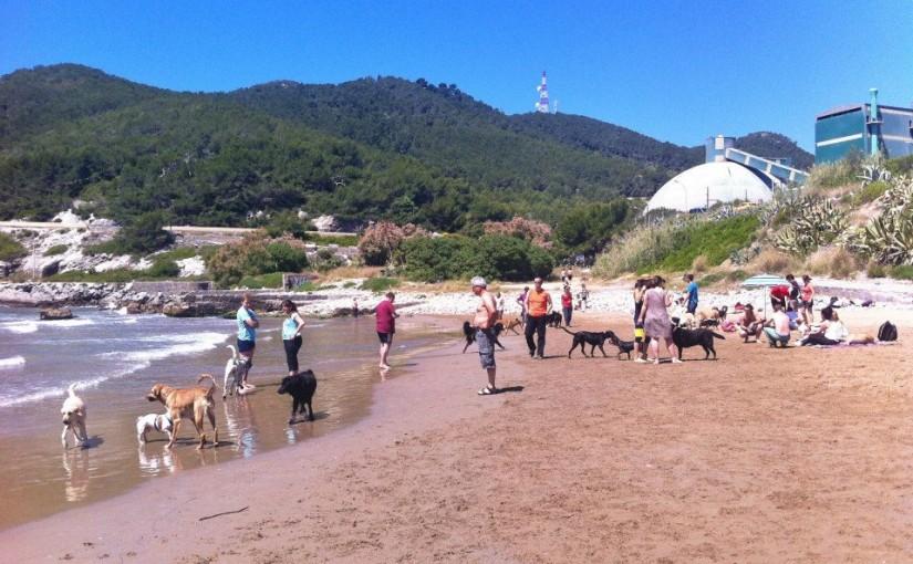 Playa para perros Vallcarca en Sitges