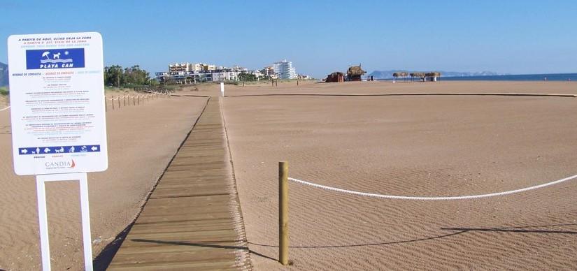 Playas para perros en Valencia