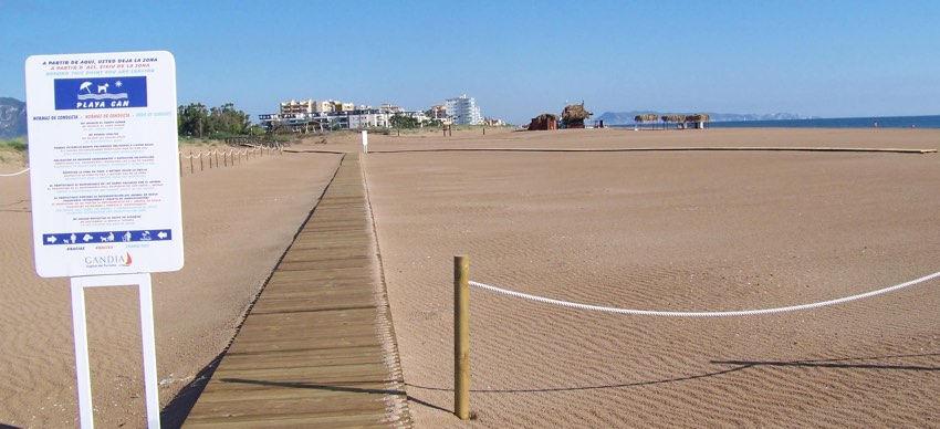 PlayaCan en Gandía se ha convertido en una de las mejores playas para perros de España.