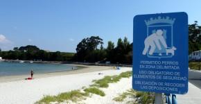 Playa para perros en Ares