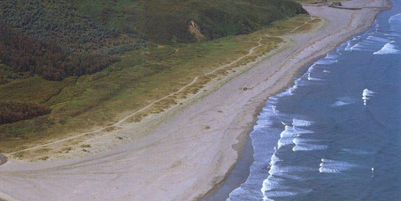 playa de bayas para perros en Asturias