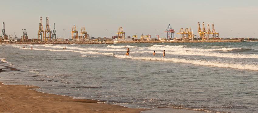 playa de pinedo para perros en valencia