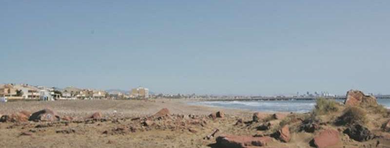 playa para perros en El Puig Valencia