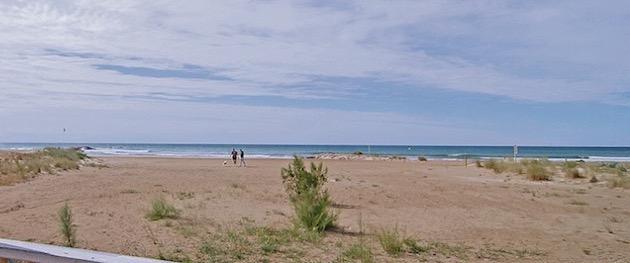 playa-para-perros-de-cubelles-barcelona