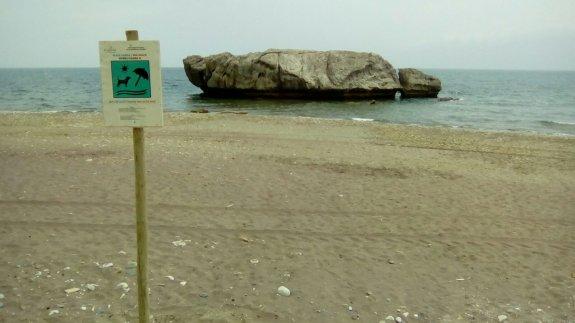 playa-de-piedra-paloma-estepona-para-perros