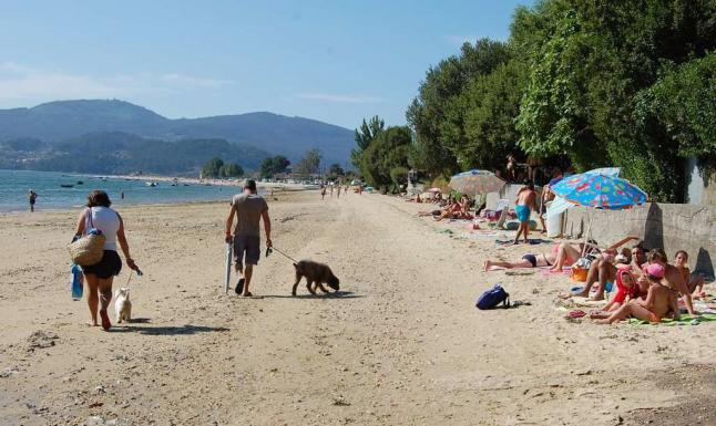 playa-de-cesantes-para-perros-redondela