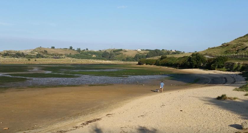 playa riberuca para perros en suances