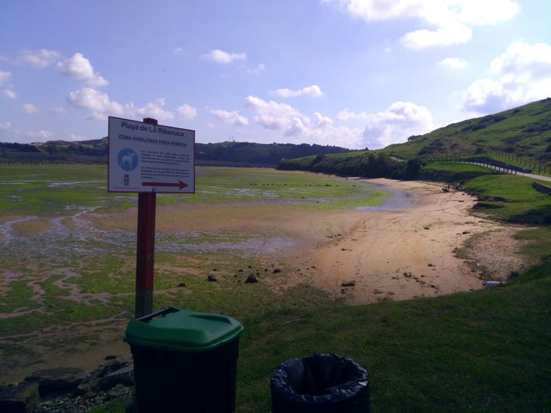 playa para perros la riberuca en Suances