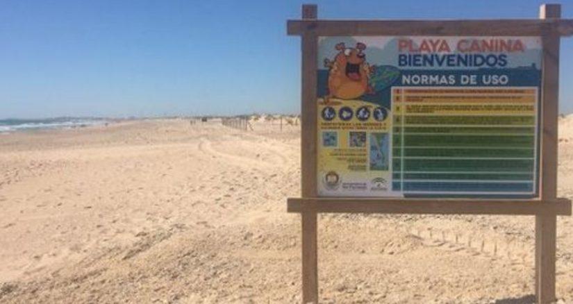 Playa para Perros en Camposoto Cádiz