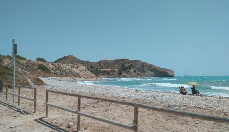 playa El Xarco para perros