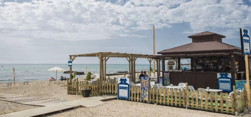Playas Para Perros En Alicante 2021 Listado Oficial
