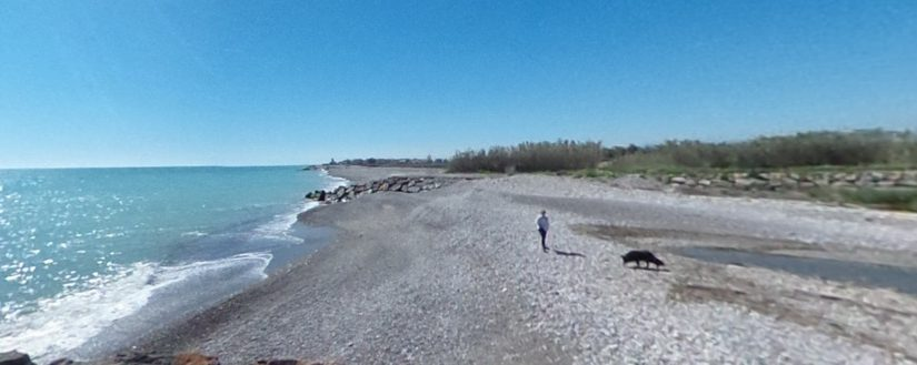 Playa para perros en Moncófar, Playa Belcaire