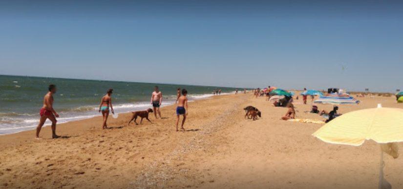 Playas para perros en Andalucía 2017