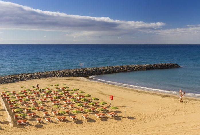 29 Alojamientos de Playa del Inglés en Gran Canaria que admiten perros