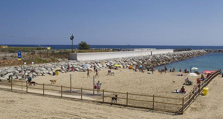 playas espana con perros
