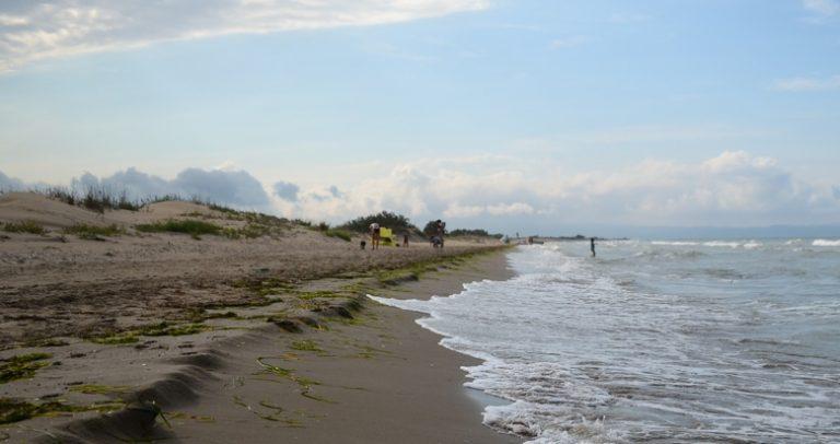 playa canina de Deltebre