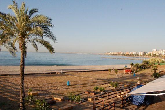 Disfruta de la playa de Benicassim con estos hoteles que aceptan perros