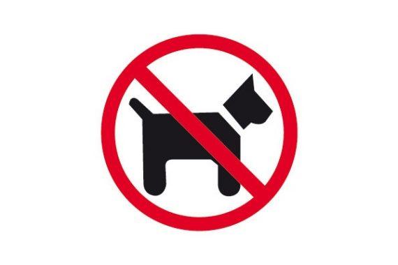 Playa Las Gaviotas prohibido perros