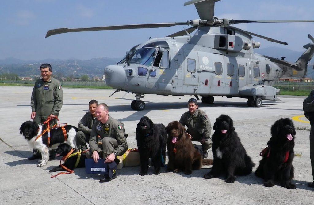 Equipo del ejercito posando con los perros que utilizan para situaciones de emergencia y rescate