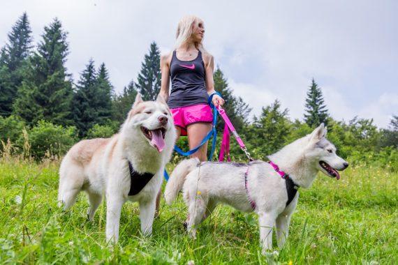 Chica paseando a dos perros con correa por el prado, un buen lugar para empezar