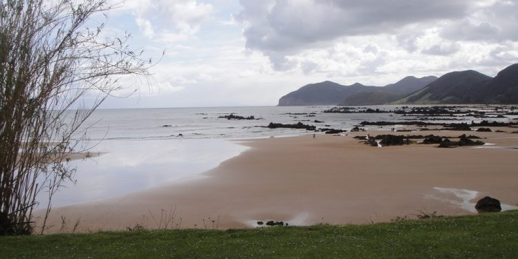 Playa De Helgueras Playa Para Perros En Noja Redcanina Es