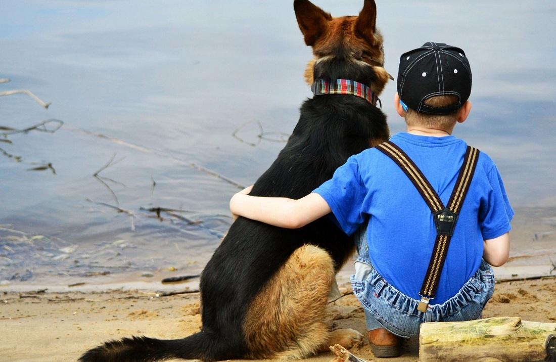 Niño abrazando a un Pastor Alemán mientras los dos están sentado mirando el mar