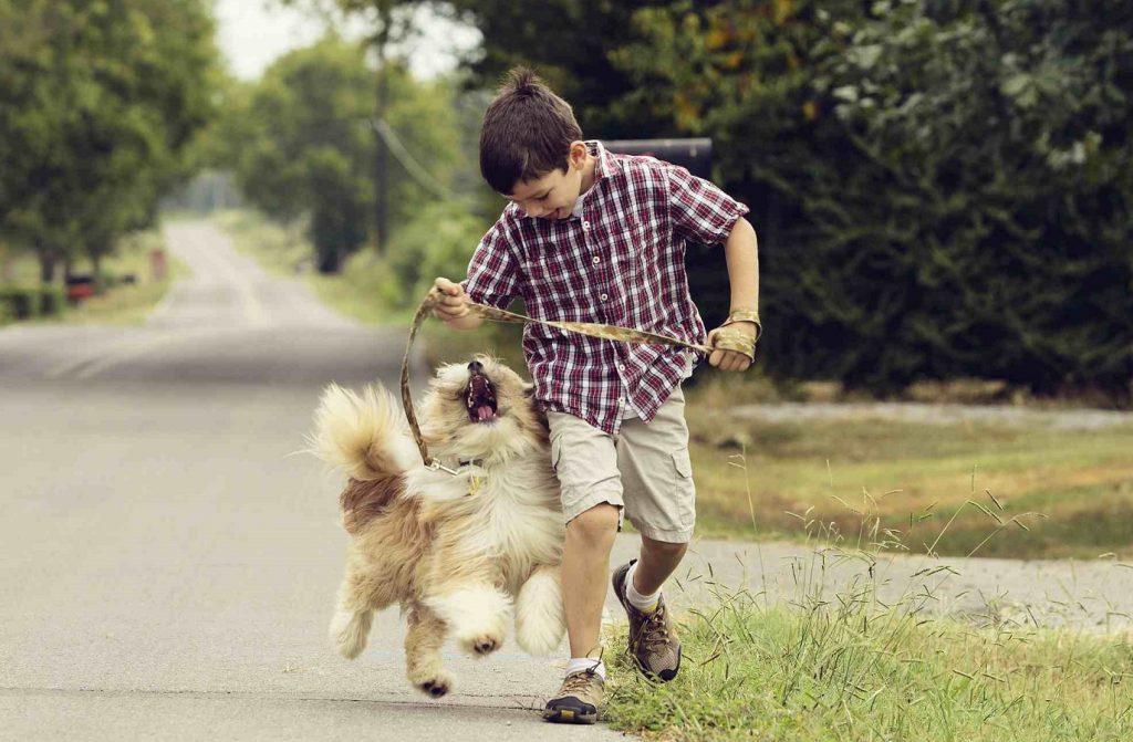 Niño paseando a su perro con la correa mientras corren los dos a la vez