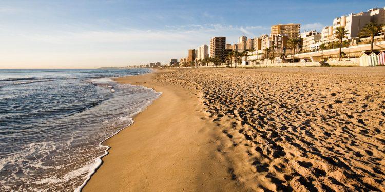 Foto de la playa de Campello al amanecer donde se pueden ver los apartamentos al fondo muy cerca de la playa y donde algunos de ellos admiten perros GRATIS