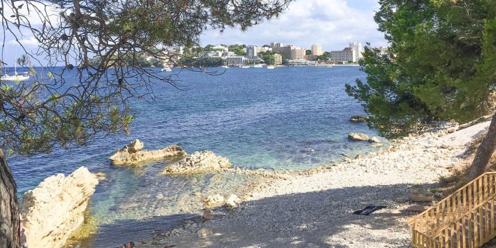 Encuentra alojamientos que admiten perros en la playa para perros de Punta Marroig de Palma Nova