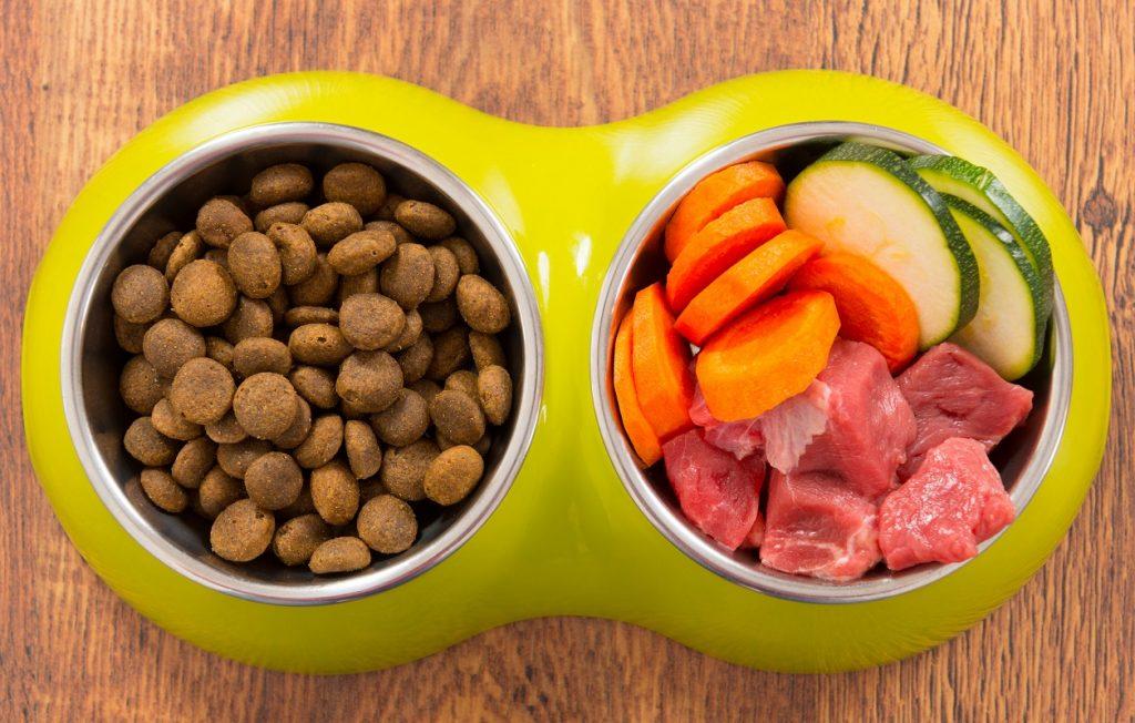 Foto de unas croquetas para perros en un bowl junto con carne y verduras
