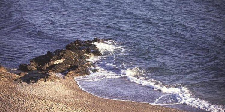 playa para perros de Benalmádena