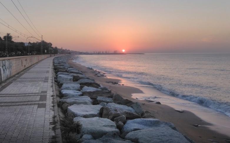 playa para perros de montgat el masnou