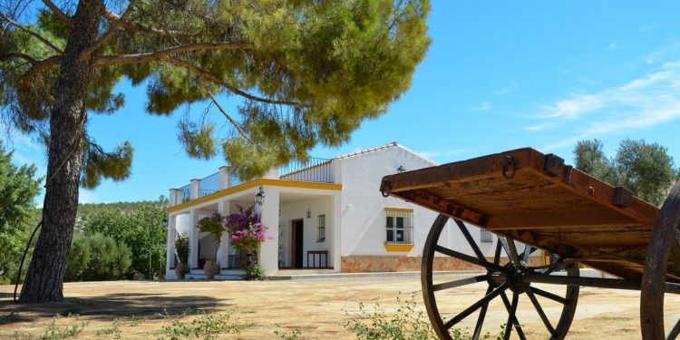 Casa rural en medio del campo en Cádiz donde tu perro se puede alojar totalmente gratis