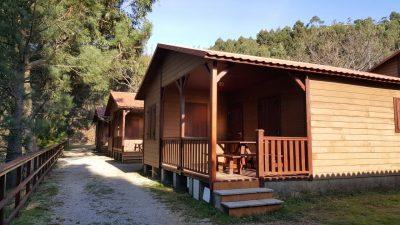 Campings que admiten perros en Galicia, muchos de ellos con cabañas de madera como en la fotografía