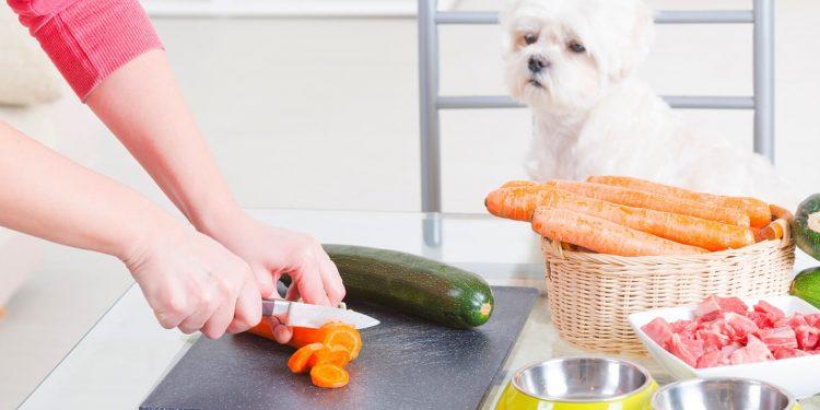master nutricion y dietetica online