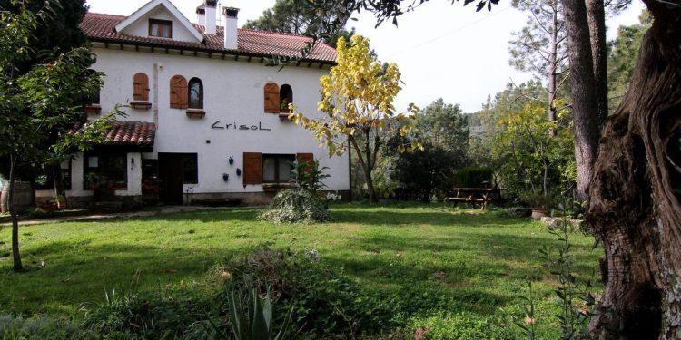 Foto del exterior donde se puede ver el césped y los árboles del jardín de Casa Rural Crisol Spa, un lugar con mucho encanto y donde tu perro se puede alojar totalmente gratis