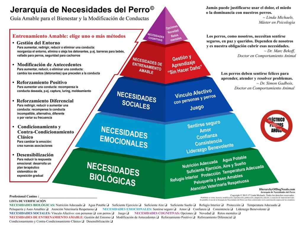 Pirámide_necesidades_básicas_perros