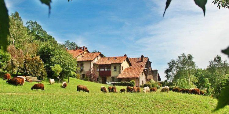 Más de 27 hoteles rurales de la provincia de Asturias ideales para ir con tu mascota de vacaciones como en esta casa rural en medio de un prado donde aceptan perros.